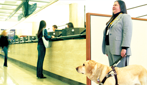 Woman in office with guide dog