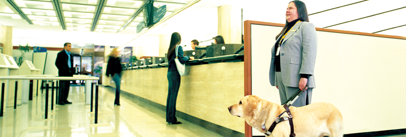 Visually challenged lady and her guide dog at a service counter lineup.